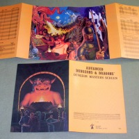 RARE 1ST PRINT: AD&D DM Screen set