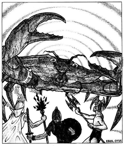 Crab encounter