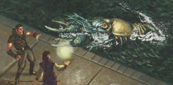 Giant crayfish b